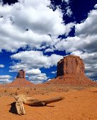 The Monument Valley Navajo Tribal Park poster