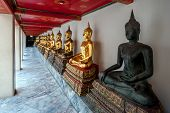 One Sculpture Of The Dark And Many Golden Buddhas Sit In A Lotus Position In A Row. Marble Floor And poster