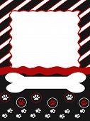 Dog_border Copy