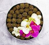 Floristics. Floral Pattern. Design Of Bridal Bouquet Of Flowers. Vernal Plate