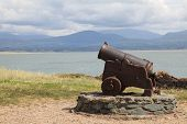 stock photo of anglesey  - An Old Cannon at Llanddwyn Island - JPG