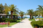 Path To Beach At The Luxury Hotel, Halkidiki, Greece