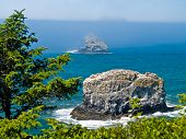 pic of mear  - Rugged Rocky Coastline on the Oregon Coast Overlook from Cape Meares Lighthouse - JPG