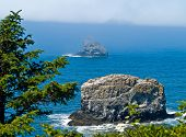 foto of mear  - Rugged Rocky Coastline on the Oregon Coast Overlook from Cape Meares Lighthouse - JPG