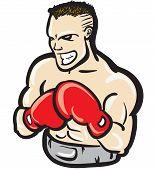 Fierce boxer