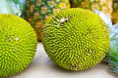 Jackfruit Or Jakfruit Or Breadfruit