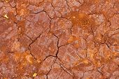 Cracked Dirt From Drought