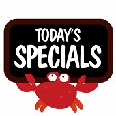 Isolated crab holding sign vector