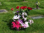 Rose Bouquet Near Grave