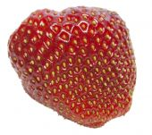 Fresh Isolated Strawberry