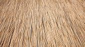 Natural Dry Thatch Background Texture