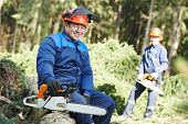 picture of chainsaw  - Portrait of lumberjack logger worker in protective workwear with chainsaw at forest - JPG