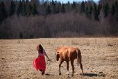 picture of horses ass  - Beautiful red haired girl and Russian Don horse outdoors - JPG