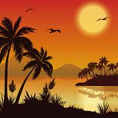 image of mew  - Tropical landscape - JPG