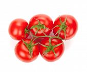 Ripe tomatoes. Isolated on white background