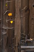 Old Barn Wooden Door