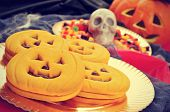 pic of sweetie  - a pile of pumpkin - JPG