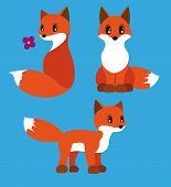 Fox-Set
