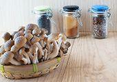 Brown Beech, Buna Shimeji Mushrooms.