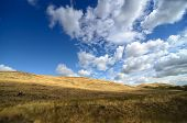 Autumn in Prairie