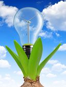 Bulb with wind turbine on plant