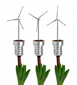Bulbs with wind turbines on plant