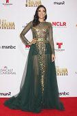 LOS ANGELES - OCT 10:  Edy Ganem at the 2014 NCLR ALMA Awards Press Room at Civic Auditorium on October 10, 2014 in Pasadena, CA