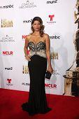 LOS ANGELES - OCT 10:  Andrea Navedo at the 2014 NCLR ALMA Awards Arrivals at Civic Auditorium on October 10, 2014 in Pasadena, CA
