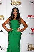 LOS ANGELES - OCT 10:  Gina Rodriguez at the 2014 NCLR ALMA Awards Press Room at Civic Auditorium on October 10, 2014 in Pasadena, CA