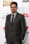 LOS ANGELES - OCT 10:  Michael Pena at the 2014 NCLR ALMA Awards Arrivals at Civic Auditorium on October 10, 2014 in Pasadena, CA