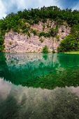 Fish In Turquoise Transparent Water Of Plitvice Lakes, National Park, Croatia