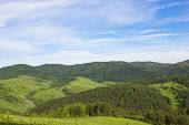 Natural Background. Summer Mountain Landscape
