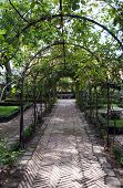 Garden arch, Madrid in the Spain