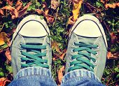 Shoes In The Leafs