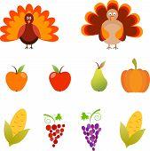 Turkey Vector, Corn, Grape, Pumpkin, Apples and Pear