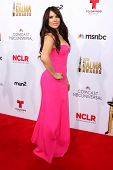 LOS ANGELES - OCT 10:  Vanessa Villela at the 2014 NCLR ALMA Awards Arrivals at Civic Auditorium on October 10, 2014 in Pasadena, CA