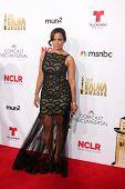 LOS ANGELES - OCT 10:  Judy Reyes at the 2014 NCLR ALMA Awards Arrivals at Civic Auditorium on October 10, 2014 in Pasadena, CA
