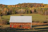 Rural Shack In New Brunswick Fall Season