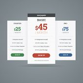 Pricing Table With Three Plans For Websites.