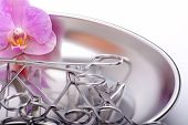 Surgical Tools and orchid