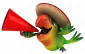 pic of parrots  - Fun parrot - JPG