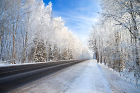 picture of slippery-roads  - winter landscape with the road the forest and the blue sky - JPG