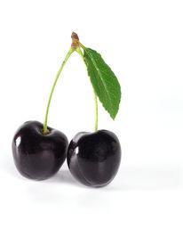 picture of black-cherry  - black cherry - JPG
