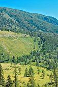 Summer Altay Mountain