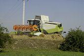 stock photo of threshing  - The big harvesting machine harvest the crop - JPG