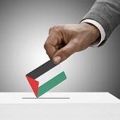 Black Male Holding Flag. Voting Concept - Palestine