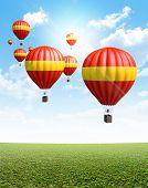 Hot Air Balloons On Green Grass