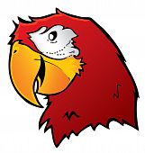 Cartoon Parrot Vector.eps