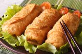 Spring Rolls Fried On A Plate With Lettuce And Tomatoes