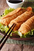 Fried Spring Rolls On A Plate And Chopsticks Close-up. Vertical